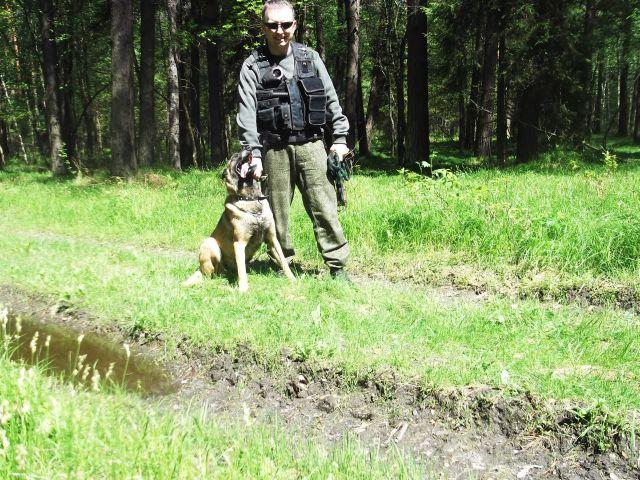 szkolenie wyszukiwanie pozoranta w terenie leśnym
